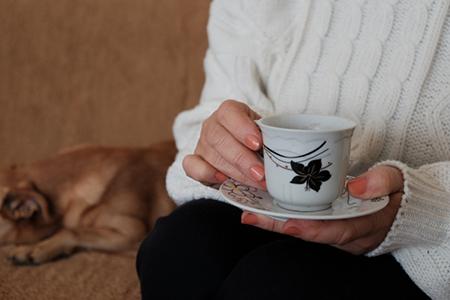 ほうじ茶の犬への影響