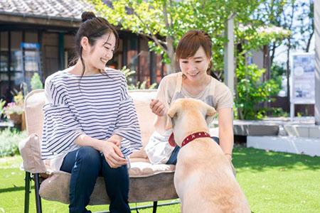 他の盲導犬ボランティアとの交流の様子